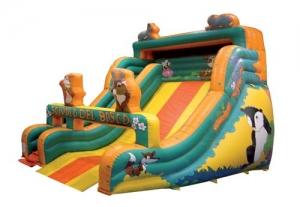 Woodland Slide Step2 Πλαστικά Παιχνίδια